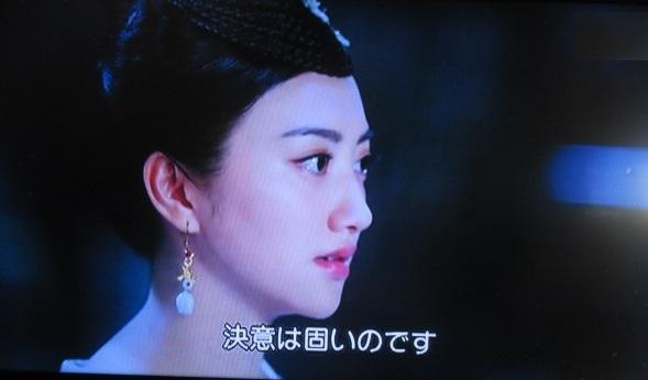 宮廷 花 の たち 女 散る あらすじ 中国 ドラマ